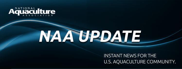 NAA Update